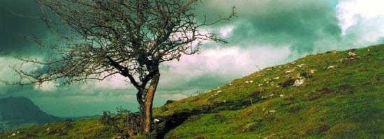 Naturaleza Euskadi