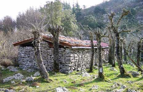 Aranerreka-Kilimon, Mendaro