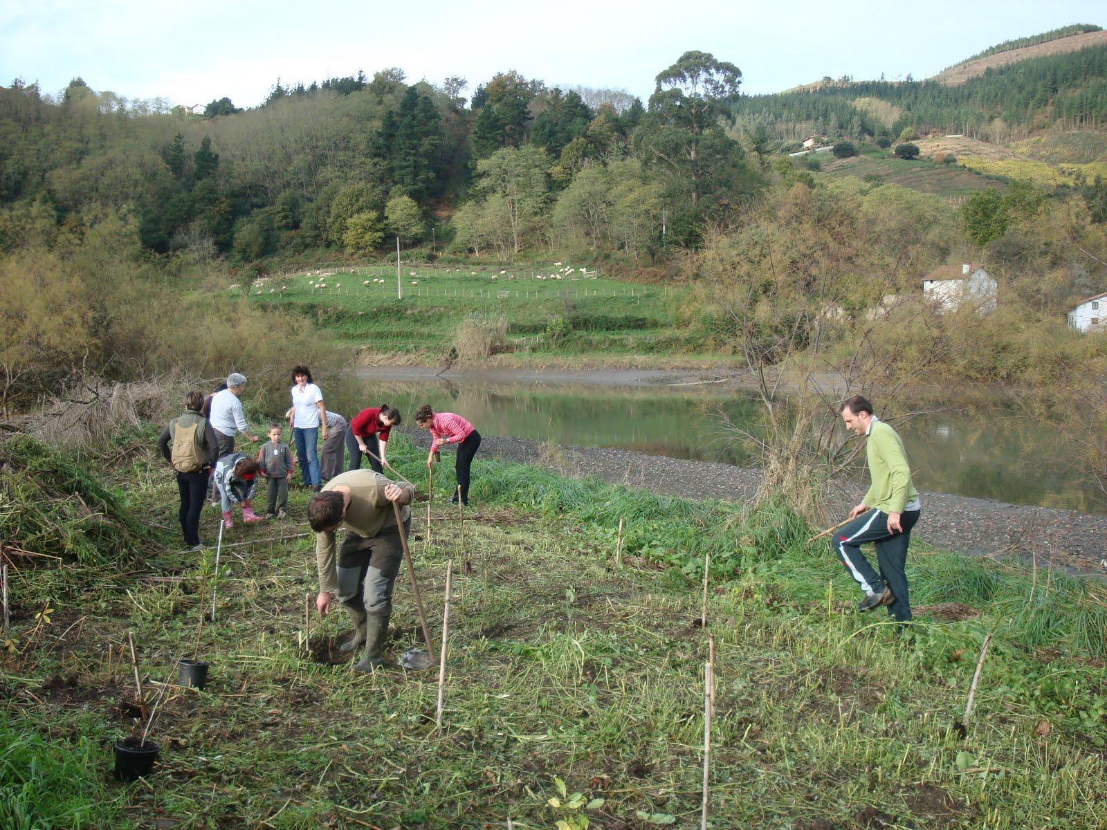 Voluntariado limpiando la zona de Casa de Campo de las Marismas de Deba