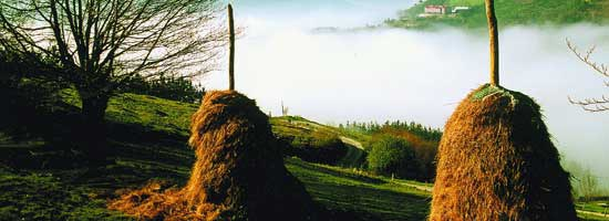 Naturaleza País Vasco