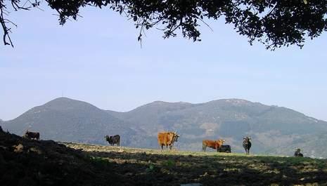 Macizo de Arno, Debabarrena