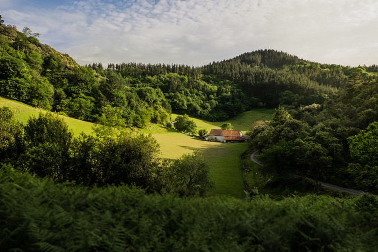 Vallée d'Olatz