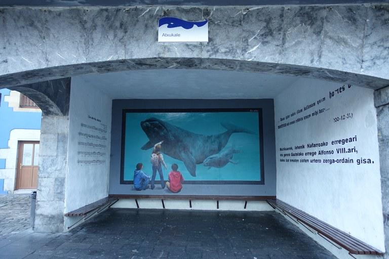 Baleine à Atxukale